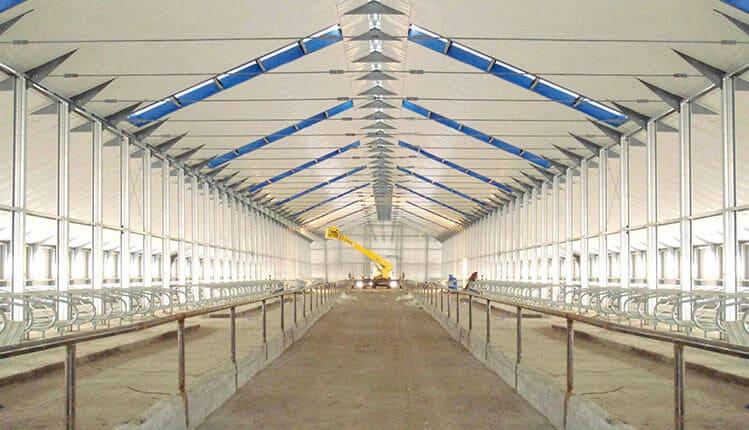 Строительство молочных ферм